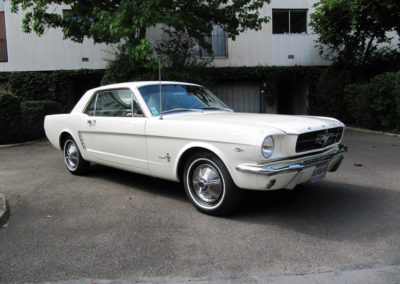 Mustang_10